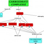 CARBOIDRATI COMPLESSI - AMIDO.cmap